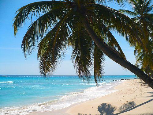 Barbados Marriage License